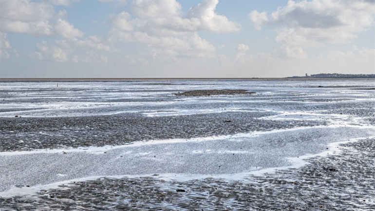 Whitstable Photography Midday Light Colour