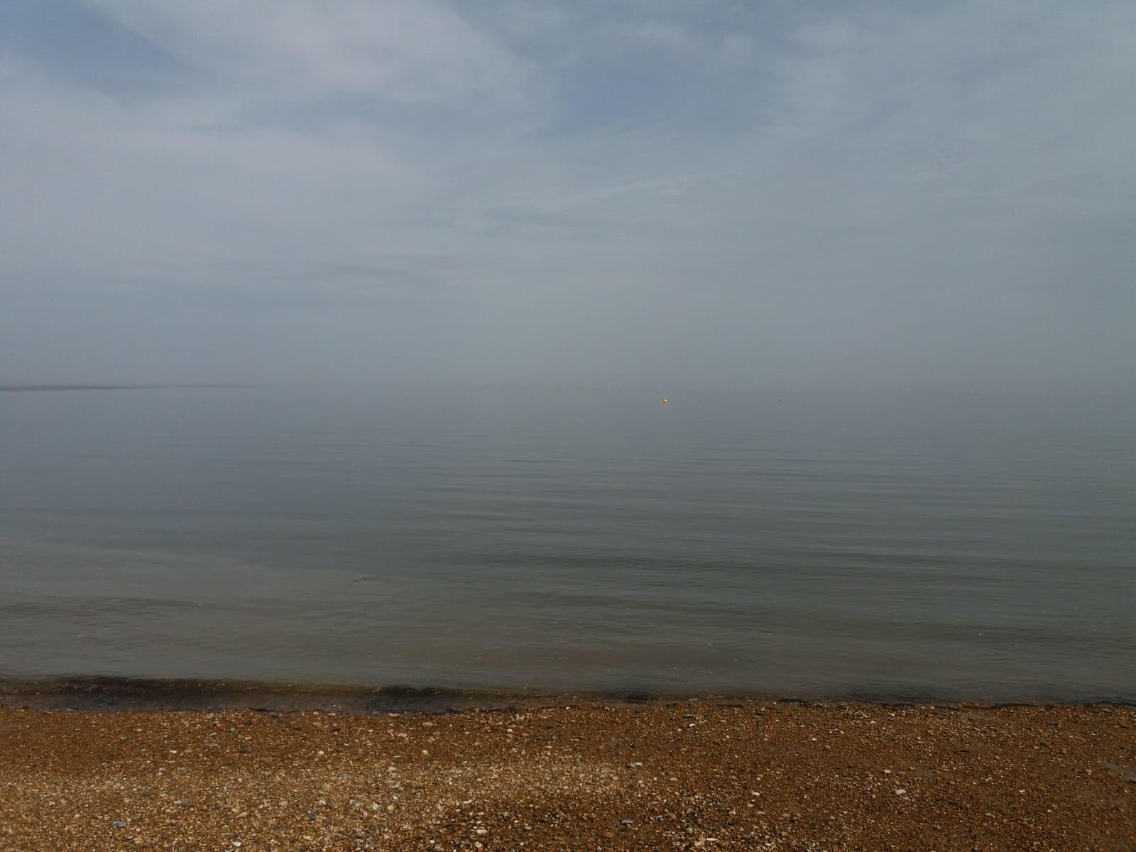 Eyes on the Whitstable Horizon